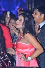 at Sahara Star Seduction for New Year_s Eve on 31st Dec 2011 (131).JPG