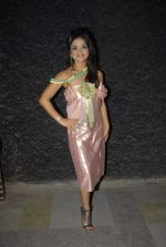 at Rainbow 2012 by coveted designer Aarti Vijay Gupta in Rude Lounge, Mumbai on 1st Jan 2012 (38).JPG