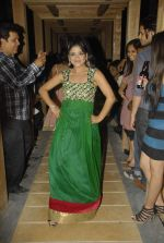 at Rainbow 2012 by coveted designer Aarti Vijay Gupta in Rude Lounge, Mumbai on 1st Jan 2012 (80).JPG