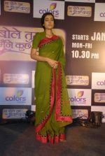 Navina Bole at the launch of Colors new show Na Bole Tum Na Maine Kuch Kaha in Vie Lounge on 4th Jan 2012 (22).JPG