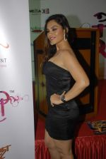 at Calendar launch by Shayadri Entertainment in Orchid Hotel on 4th Jan 2012 (20).JPG