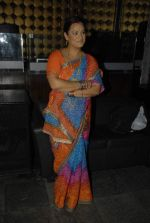 at the launch of Colors new show Na Bole Tum Na Maine Kuch Kaha in Vie Lounge on 4th Jan 2012 (25).JPG
