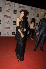 Jesse Randhawa at Star Screen Awards 2012 in Mumbai on 14th Jan 2012 (284).JPG