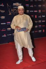 at the 7th Chevrolet Apsara Awards 2012 Red Carpet in Yashraj Studio, Mumbai on 25th Jan 2012 (143).JPG