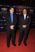 at the 7th Chevrolet Apsara Awards 2012 Red Carpet in Yashraj Studio, Mumbai on 25th Jan 2012 (170).JPG