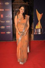 at the 7th Chevrolet Apsara Awards 2012 Red Carpet in Yashraj Studio, Mumbai on 25th Jan 2012 (173).JPG