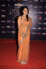 at the 7th Chevrolet Apsara Awards 2012 Red Carpet in Yashraj Studio, Mumbai on 25th Jan 2012 (178).JPG