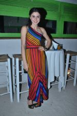 sherry shroff at the launch of ZYNG calendar in Olive on 26th Jan 2012 (65).JPG