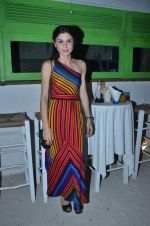 sherry shroff at the launch of ZYNG calendar in Olive on 26th Jan 2012 (66).JPG