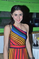 sherry shroff at the launch of ZYNG calendar in Olive on 26th Jan 2012 (67).JPG