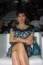 Kangna Ranaut at Venky_s Mumbai Fighters and Bangkok Elephants match in Inorbit Mall, Mumbai on 3rd Feb 2012 (27).JPG