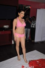 Madhavi Sharma valentine photo shoot in Shivas Studio on 7th Feb 2012 (57).JPG