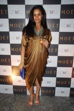 Pratima Bhatia at Moet & Chandon valentine Party in Mumbai on 9th Feb 2012 (63).JPG