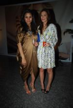 Pratima Bhatia at Moet & Chandon valentine Party in Mumbai on 9th Feb 2012 (67).JPG
