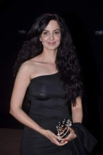 Rukhsar at Stardust Awards red carpet in Mumbai on 10th Feb 2012 (198).JPG