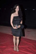 Rukhsar at Stardust Awards red carpet in Mumbai on 10th Feb 2012 (200).JPG