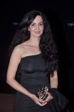 Rukhsar at Stardust Awards red carpet in Mumbai on 10th Feb 2012 (201).JPG