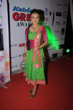 Rati Pandey at GR8 Women Achievers Awards 2012 on 15th Feb 2012 (34).JPG