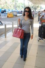 Amisha Patel snapped at airport, Mumbai on 16th Feb 2012 (5).JPG