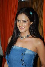 Nandini Singh at the launch of Cellulike mobile service in Novotel, Mumbai on 18th Feb 2012 (41).JPG