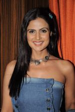 Nandini Singh at the launch of Cellulike mobile service in Novotel, Mumbai on 18th Feb 2012 (44).JPG