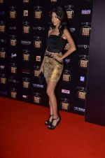 at Cosmopolitan Fun Fearless Female & Male Awards in Mumbai on 19th Feb 2012 (147).JPG