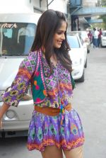Genelia D_Souza on the sets of Dance India Dance in Famous on 20th feb 2012 (18).JPG