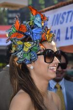 at Poonawala breeders Multi Million race in Mumbai on 26th Feb 2012 (137).JPG