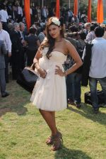 at Poonawala breeders Multi Million race in Mumbai on 26th Feb 2012 (183).JPG