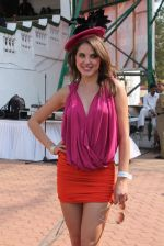 at Poonawala breeders Multi Million race in Mumbai on 26th Feb 2012 (187).JPG