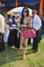 namrata shroff at Poonawala breeders Multi Million race in Mumbai on 26th Feb 2012.JPG