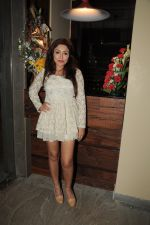 Tareena Patel at Lagerbay Restarant Launch Party in Mumbai on 9th March 2012 (31).JPG