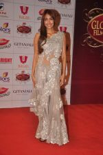 Jiah Khan at The Global Indian Film & Television Honors 2012 in Mumbai on 15th March 2012 (330).JPG