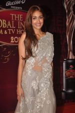 Jiah Khan at The Global Indian Film & Television Honors 2012 in Mumbai on 15th March 2012 (540).JPG