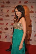 Mrinalini Sharma at The Global Indian Film & Television Honors 2012 in Mumbai on 15th March 2012 (498).JPG