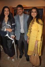 Aarti Surendranath at Paresh Maity art event in ICIA on 22nd March 2012 (4).JPG
