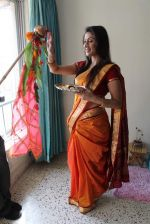 Manjari Phadnis gudi padwa photo shoot in Mumbai on 22nd March 2012 (39).JPG