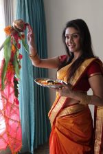 Manjari Phadnis gudi padwa photo shoot in Mumbai on 22nd March 2012 (44).JPG