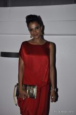Mansi Scott at DVF-Vogue dinner in Mumbai on 22nd March 2012 (82).JPG