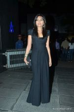 Mrinalini Sharma at DVF-Vogue dinner in Mumbai on 22nd March 2012 (222).JPG