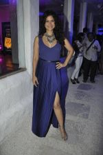 Sushma Reddy at UTVstars Walk of Stars after party in Olive, BAndra, Mumbai on 28th March 2012 (8).JPG