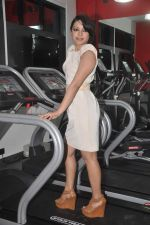 Devshi Khanduri at Physemo Fitness Studios in Kotia Nirman, Behind Fun Republic, Andheri on 18th May 2012 (97).JPG