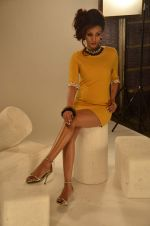 Vedita Pratap Singh photo shoot on 24th May 2012 (57).JPG