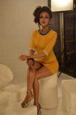 Vedita Pratap Singh photo shoot on 24th May 2012 (60).JPG
