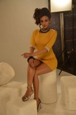 Vedita Pratap Singh photo shoot on 24th May 2012 (62).JPG