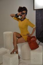 Vedita Pratap Singh photo shoot on 24th May 2012 (65).JPG