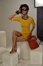 Vedita Pratap Singh photo shoot on 24th May 2012 (68).JPG
