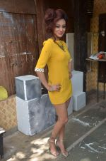 Vedita Pratap Singh photo shoot on 24th May 2012 (70).JPG