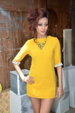 Vedita Pratap Singh photo shoot on 24th May 2012 (76).JPG