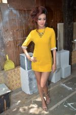 Vedita Pratap Singh photo shoot on 24th May 2012 (80).JPG